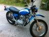 bluie1